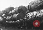 Image of wood logs United States USA, 1917, second 12 stock footage video 65675048520