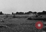 Image of Ford tractor drawn reaper United States USA, 1918, second 6 stock footage video 65675048692