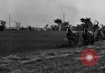 Image of horse drawn reaper United States USA, 1919, second 4 stock footage video 65675048699