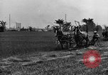 Image of horse drawn reaper United States USA, 1919, second 5 stock footage video 65675048699