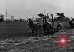 Image of horse drawn reaper United States USA, 1919, second 6 stock footage video 65675048699