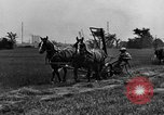 Image of horse drawn reaper United States USA, 1919, second 7 stock footage video 65675048699