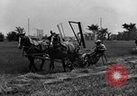 Image of horse drawn reaper United States USA, 1919, second 8 stock footage video 65675048699
