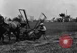 Image of horse drawn reaper United States USA, 1919, second 10 stock footage video 65675048699