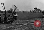 Image of horse drawn reaper United States USA, 1919, second 11 stock footage video 65675048699