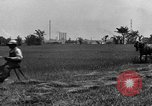 Image of horse drawn reaper United States USA, 1919, second 12 stock footage video 65675048699