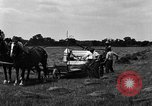 Image of horse drawn binder United States USA, 1919, second 2 stock footage video 65675048700