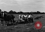 Image of horse drawn binder United States USA, 1919, second 3 stock footage video 65675048700