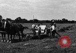 Image of horse drawn binder United States USA, 1919, second 4 stock footage video 65675048700