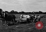 Image of horse drawn binder United States USA, 1919, second 7 stock footage video 65675048700