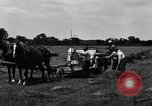 Image of horse drawn binder United States USA, 1919, second 9 stock footage video 65675048700