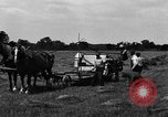 Image of horse drawn binder United States USA, 1919, second 11 stock footage video 65675048700