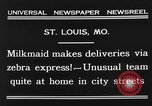 Image of Zebra driven carriage Saint Louis Missouri USA, 1931, second 3 stock footage video 65675048705