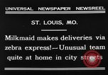 Image of Zebra driven carriage Saint Louis Missouri USA, 1931, second 5 stock footage video 65675048705