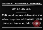 Image of Zebra driven carriage Saint Louis Missouri USA, 1931, second 7 stock footage video 65675048705