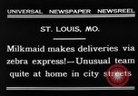Image of Zebra driven carriage Saint Louis Missouri USA, 1931, second 10 stock footage video 65675048705