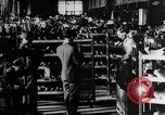Image of army shoes United States USA, 1917, second 7 stock footage video 65675048740