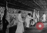 Image of animal skin United States USA, 1917, second 3 stock footage video 65675048741