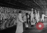 Image of animal skin United States USA, 1917, second 4 stock footage video 65675048741