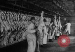 Image of animal skin United States USA, 1917, second 5 stock footage video 65675048741