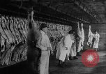 Image of animal skin United States USA, 1917, second 6 stock footage video 65675048741