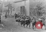 Image of United States soldiers European Theater, 1918, second 8 stock footage video 65675048776