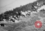 Image of World War 1 Russia, 1915, second 8 stock footage video 65675048904