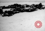 Image of Digging common grave Russia, 1915, second 1 stock footage video 65675048905