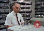 Image of white mice Washington DC USA, 1965, second 7 stock footage video 65675048919