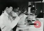 Image of Rats dissected for disease investigation United States USA, 1932, second 8 stock footage video 65675048951