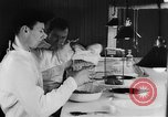 Image of Rats dissected for disease investigation United States USA, 1932, second 11 stock footage video 65675048951