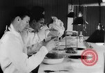 Image of Rats dissected for disease investigation United States USA, 1932, second 12 stock footage video 65675048951
