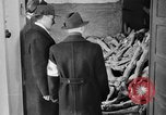 Image of German civilians tour Dachau concentration camp after its liberation Bavaria Germany, 1945, second 7 stock footage video 65675049039