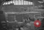 Image of Red Cross Geneva Switzerland, 1945, second 12 stock footage video 65675049116