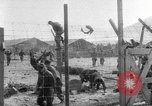 Image of North Korean prisoner riots United States USA, 1952, second 12 stock footage video 65675049159