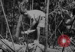 Image of elephants Burma, 1944, second 9 stock footage video 65675049258