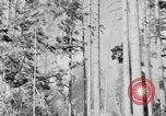Image of forest fire Olympic Peninsula Washington USA, 1938, second 9 stock footage video 65675049442