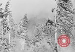 Image of forest fire Olympic Peninsula Washington USA, 1938, second 10 stock footage video 65675049442