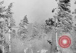 Image of forest fire Olympic Peninsula Washington USA, 1938, second 11 stock footage video 65675049442