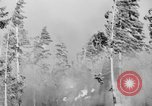 Image of forest fire Olympic Peninsula Washington USA, 1938, second 12 stock footage video 65675049442