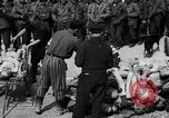 Image of pile of dead Buchenwald Germany, 1945, second 1 stock footage video 65675049492
