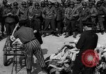Image of pile of dead Buchenwald Germany, 1945, second 12 stock footage video 65675049492