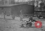 Image of victims Buchenwald Germany, 1945, second 3 stock footage video 65675049494