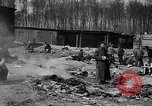 Image of victims Buchenwald Germany, 1945, second 8 stock footage video 65675049494