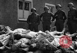 Image of dead bodies Buchenwald Germany, 1945, second 6 stock footage video 65675049495