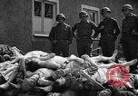 Image of dead bodies Buchenwald Germany, 1945, second 7 stock footage video 65675049495
