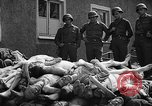 Image of dead bodies Buchenwald Germany, 1945, second 9 stock footage video 65675049495