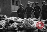 Image of dead bodies Buchenwald Germany, 1945, second 10 stock footage video 65675049495