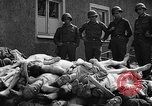 Image of dead bodies Buchenwald Germany, 1945, second 12 stock footage video 65675049495