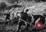 Image of German soldiers Italy, 1942, second 4 stock footage video 65675049513